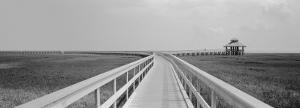 Marsh Boardwalk, Texas, USA