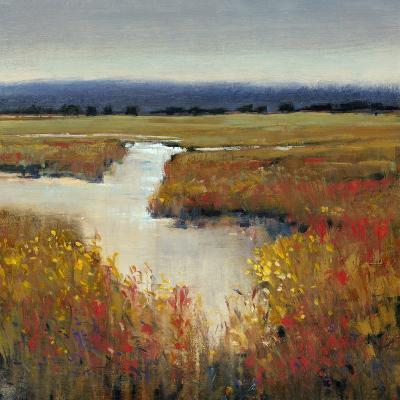 Marsh Land I-Tim O'toole-Art Print