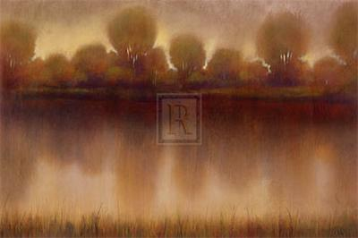 Marsh of the Warm Sunset-Albert Williams-Art Print