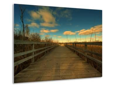 Marsh Path-Irene Suchocki-Metal Print