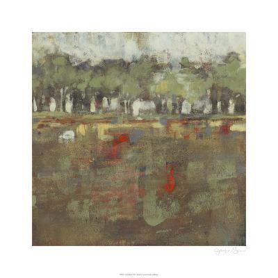Marsh Plane I-Jennifer Goldberger-Limited Edition