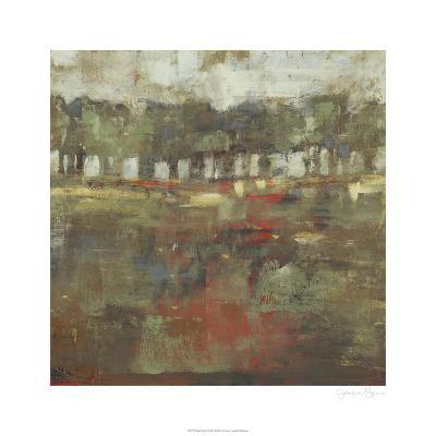 Marsh Plane II-Jennifer Goldberger-Limited Edition