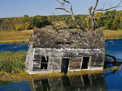 Marsh Reclaims an Abandoned Homestead-Raymond Gehman-Photographic Print