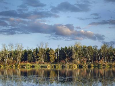 Marsh's Lake, Spruce Woods Provincial Park, Manitoba-Tim Fitzharris-Photographic Print