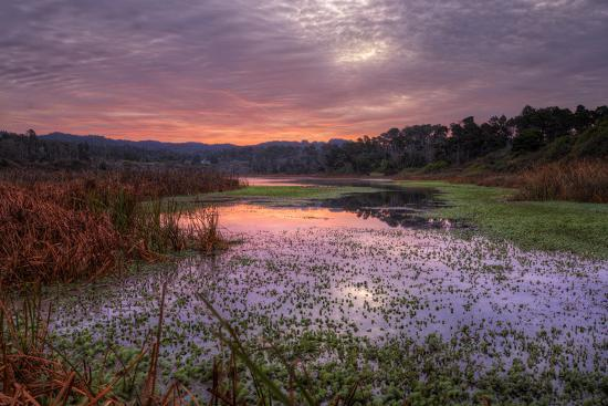 Marsh Sunrise at Fort Bragg, California Coast-Vincent James-Photographic Print