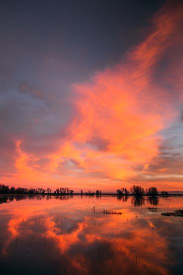 Marsh Sunset Reflections, Merced Wildlife Refuge-Vincent James-Photographic Print