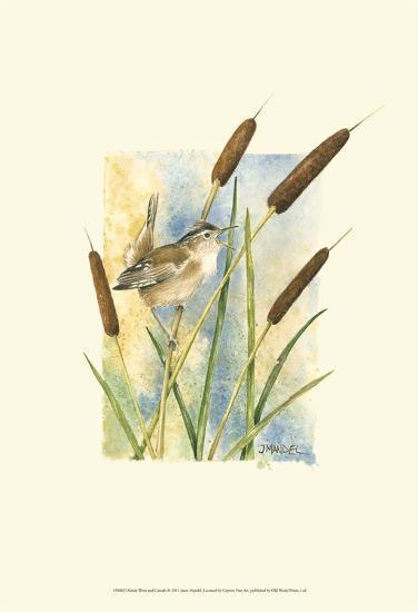 Marsh Wren and Cattails-Janet Mandel-Art Print
