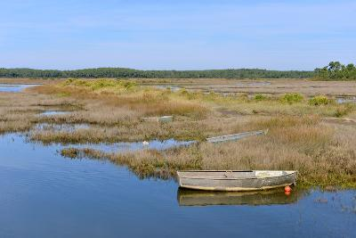 Marshes in the Bay of Arcachon-Christian Musat-Photographic Print