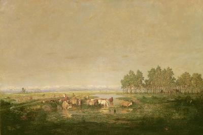 Marshland in Les Landes, C.1853-Pierre Etienne Theodore Rousseau-Giclee Print