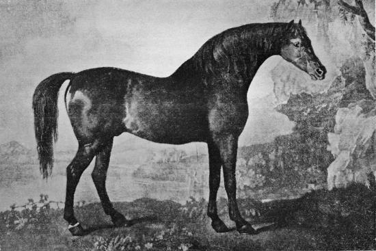 'Marske', 1750-1779, (1911)-Unknown-Giclee Print