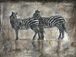 Zebras by Marta Wiley