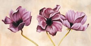 Purple Trio II by Martels