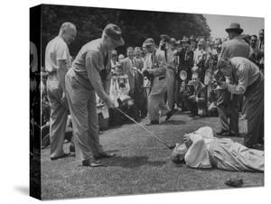 Golfers Clowning Around for the Photographers, During the Washington Post Gold Tournament by Martha Holmes