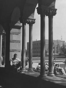Students Studying on a Spring Day at the UCLA Campus by Martha Holmes