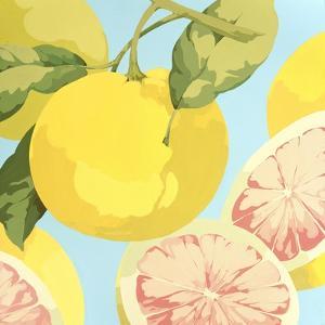 Fresh Grapefruits by Martha Negley