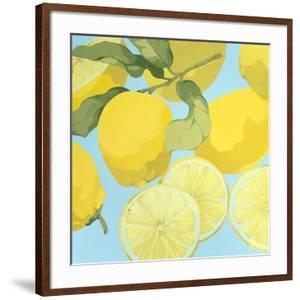 Fresh Lemons by Martha Negley