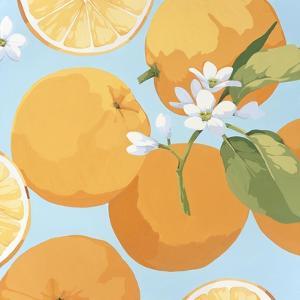 Fresh Oranges by Martha Negley