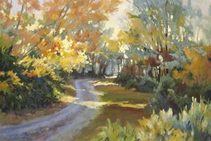 Winding Road by Martha Saudek