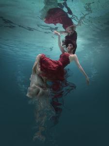 Evanesced by Martha Suherman