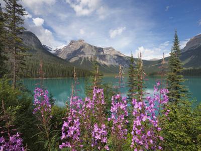 Emerald Lake, Yoho National Park, UNESCO World Heritage Site, British Columbia, Rocky Mountains, Ca