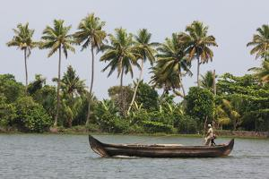 Fisherman in Traditional Boat on the Kerala Backwaters, Kerala, India, Asia by Martin Child