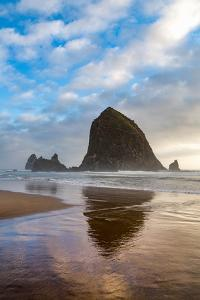 Haystack Rock reflected on the shoreline at Cannon Beach on the Pacific Northwest coast, Oregon, Un by Martin Child