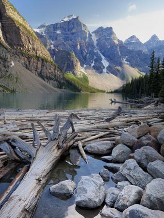 Log Jam on Moraine Lake, Banff National Park, UNESCO World Heritage Site, Alberta, Rocky Mountains,