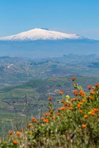 The Awe Inspiring Mount Etna, UNESCO World Heritage Site and Europe's Tallest Active Volcano by Martin Child