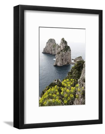 The Rugged Faraglioni Rocks in Capri, Campania, Italy, Mediterranean, Europe