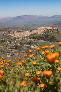 The Small Hill Town of Calascibetta Seen from Enna, Sicily, Italy, Europe by Martin Child