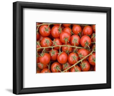Vine Tomatoes in Street Market, Ortygia, Syracuse, Sicily, Italy, Europe