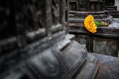 A bouquet of yellow flowers at the stone columns of Swayambhunath. by Martin Edstrom