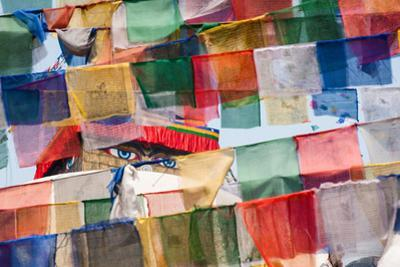 The eyes of Buddha, visible through a network of Tibetan prayer flags. by Martin Edstrom
