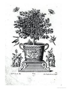 Ornamental Tree in an Urn on a Small Stage by Martin Engelbrecht