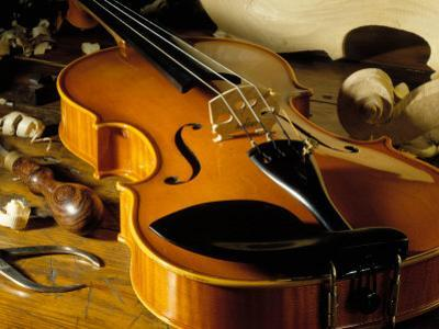 Violin Making by Martin Fox
