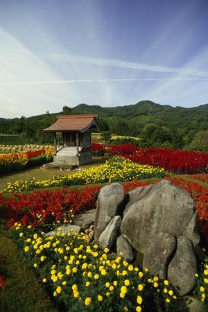 A small Shinto shrine among beds of red and yellow flowers.