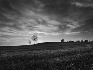 Black & White Sunset by Martin Henson