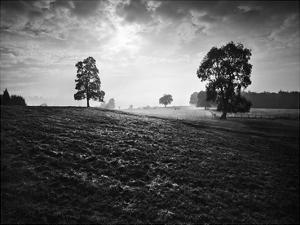 Breaking Light by Martin Henson