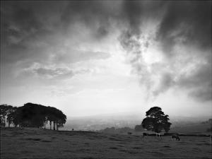Dales Landscape by Martin Henson