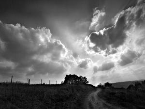 Lonely Path I by Martin Henson