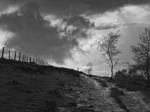 Lonely Path II by Martin Henson