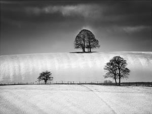Winter Triangle by Martin Henson