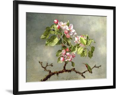 Apple Blossoms and a Hummingbird, 1875