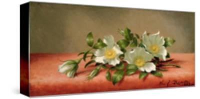 Cherokee Roses, 1889