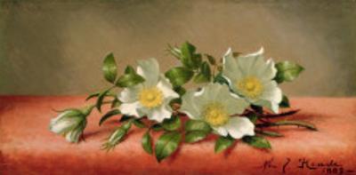 Cherokee Roses, 1889 by Martin Johnson Heade