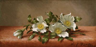 Cherokee Roses by Martin Johnson Heade