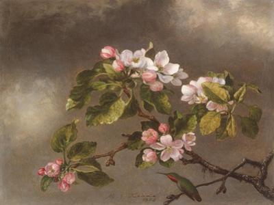 Hummingbird and Apple Blossoms, 1875 by Martin Johnson Heade
