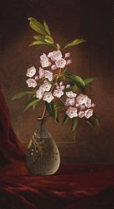 Laurel Blossoms in a Vase by Martin Johnson Heade