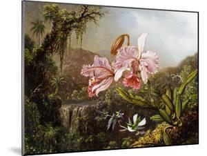 Orchids and Hummingbirds in a Brazilian Jungle, C. 1871-72 by Martin Johnson Heade