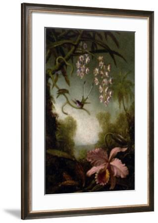 Orchids and Spray Orchids with Hummingbirds